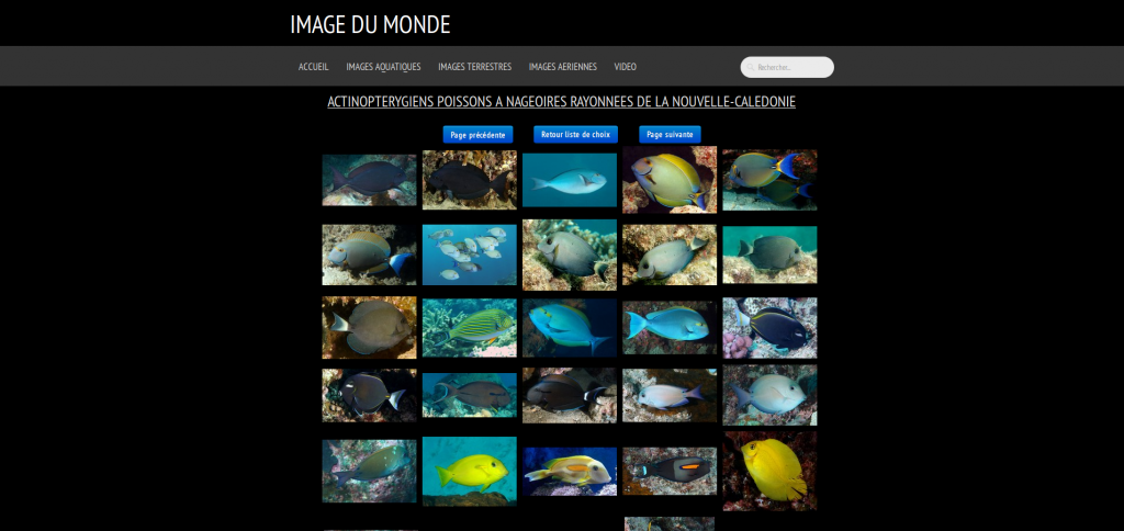 Le site de Richard : Picture Worl