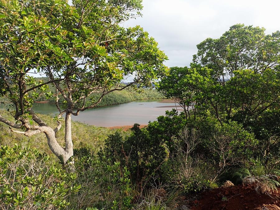 vue d'une baie vers Prony