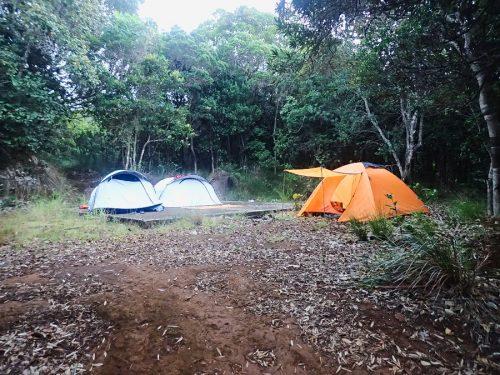 les tentes au milieu de la forêt