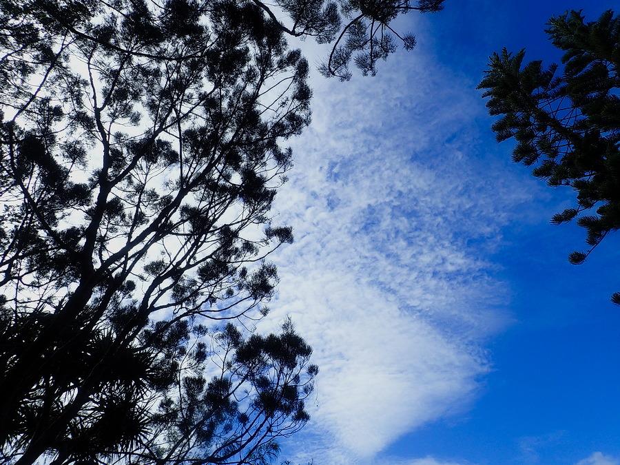 le ciel bleu avec quelques nuages