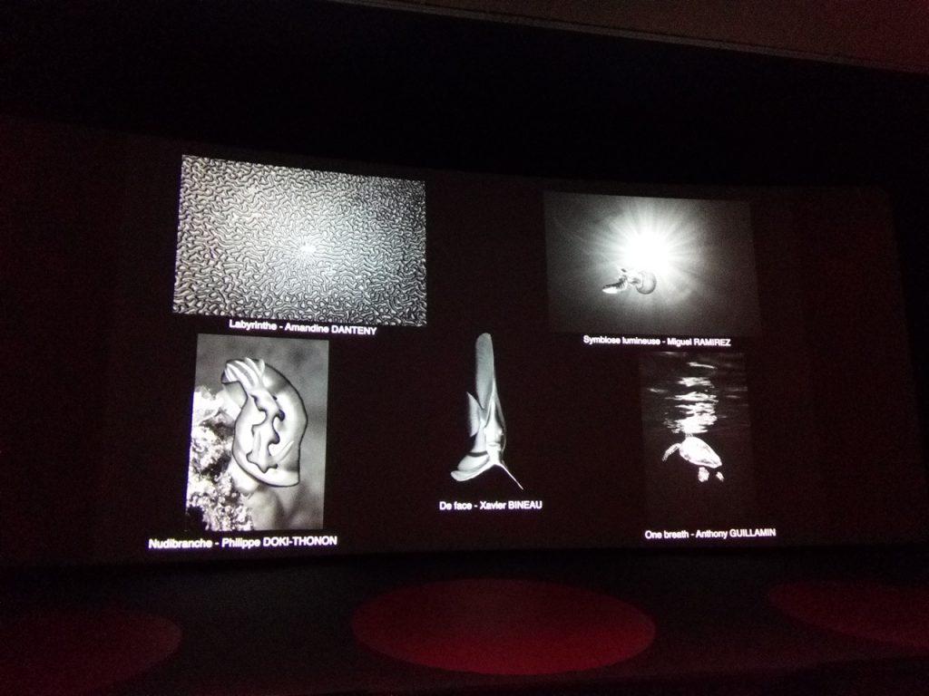 écran de cinéma avec les 5 photos nominées dans ma catégorie