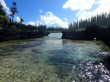 PMT en mai 2016 à la piscine naturelle de l'Île des Pins