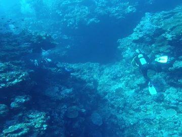 Plongée le 24 juin 2018 à la faille à Nouzotes à La Foa