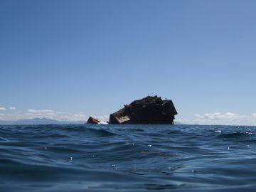 Plongée le 22 février 2020 sur le récif près de l'Ever Prosperity