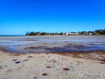 Promenade sur la plage de Magenta le 28 mars 2021