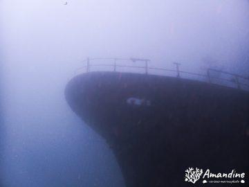 Plongée sur le Toho 5 le 25 avril 2021