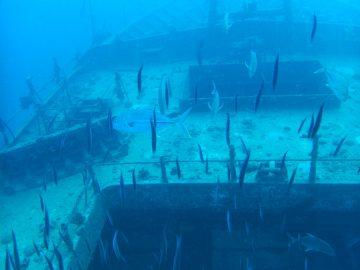 Plongée le 6 juin 2019 sur le Toho 5 en passe de Boulari