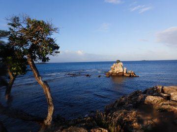 Plongée à l'aube le 14 juin 2020 au rocher à la voile à Nouméa