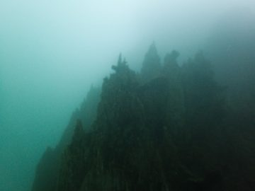 Plongées bio le 18 juillet 2020 sur l'aiguille de Prony