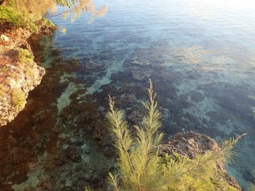 PMT le 23 juillet 2016 Baie de Jinek à Lifou