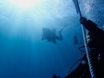 Plongées à La Foa les 27 et 28 juillet 2020