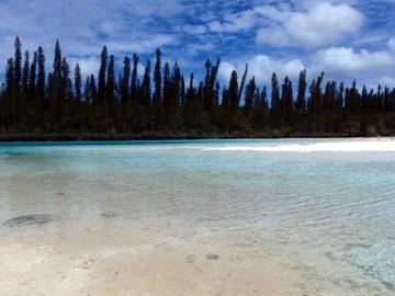 PMT en septembre 2015 à la piscine naturelle de l'Île des Pins