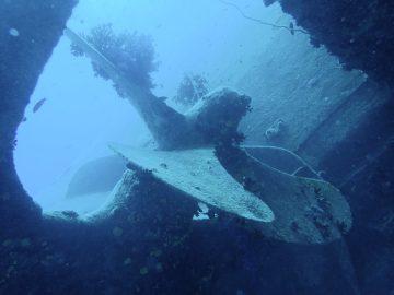 Plongée le 15 septembre 2019 sur l'épave du Humboldt