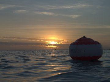 Plongée le 16 novembre 2019 à la Baie des Citrons à Nouméa