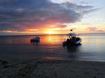 Plongée de nuit le 20 novembre 2020 près de l'ilot Ngié à l'Île des Pins