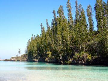 PMT le 2 décembre 2018 à la piscine naturelle de l'Île des Pins