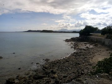 Plongée le 3 juillet 2020 au Rocher à la Voile à Nouméa